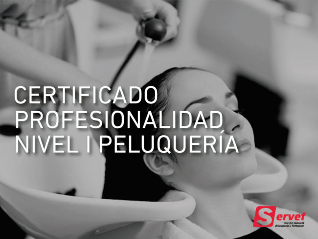Certificado Profesional de Nivel 1 de Peluquería