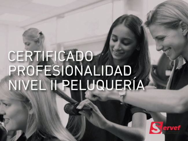 Certificado de profesionalidad de peluquería nivel 2